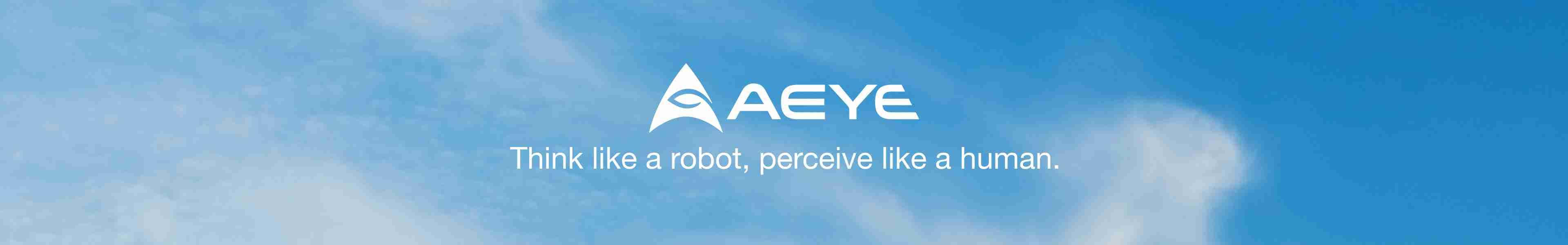 AEye - Think Like A Robot, Perceive Like A Human